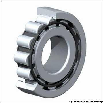0.669 Inch   17 Millimeter x 1.575 Inch   40 Millimeter x 0.63 Inch   16 Millimeter  CONSOLIDATED BEARING NU-2203  Cylindrical Roller Bearings