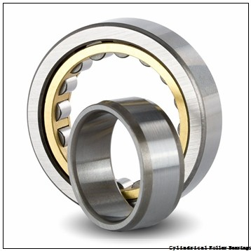 8 Inch | 203.2 Millimeter x 10.75 Inch | 273.05 Millimeter x 1.375 Inch | 34.925 Millimeter  CONSOLIDATED BEARING RXLS-8  Cylindrical Roller Bearings